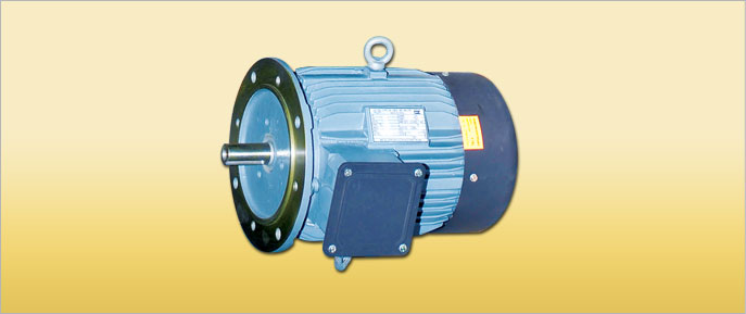 Flange  Mounted Motors- B5