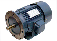 Foot cum Flange Motors - B35